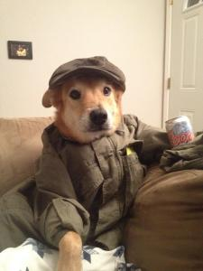 cute-dog-drinking-beer